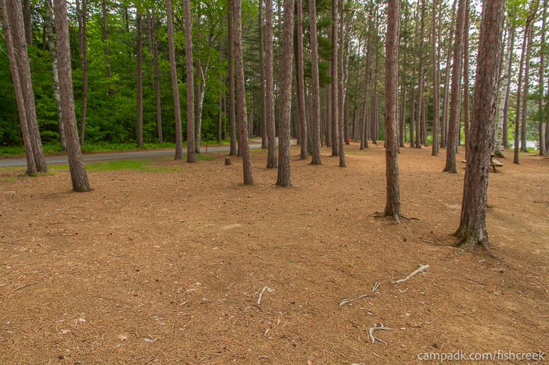 Campsite Photo of Site 18 at Fish Creek Pond Campground, New York - Cross Site View