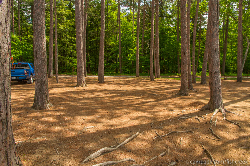 Campsite Photo of Site 18 at Fish Creek Pond Campground, New York - Looking Back Towards Road