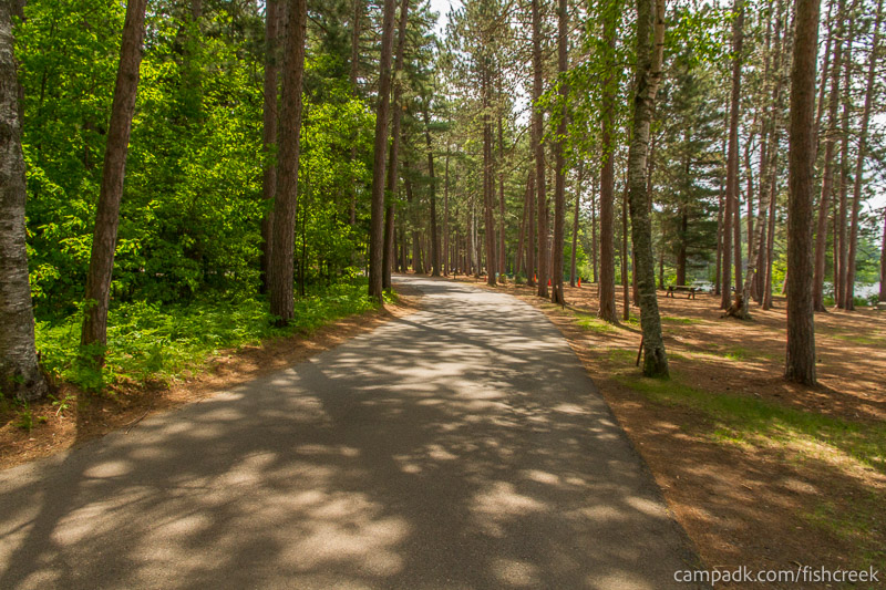 Campsite Photo of Site 18 at Fish Creek Pond Campground, New York - View Down Road from Campsite