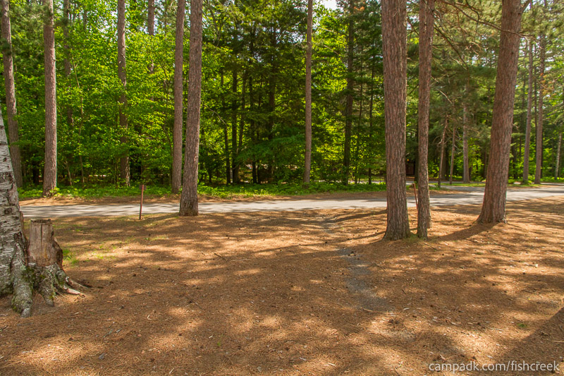 Campsite Photo of Site 16 at Fish Creek Pond Campground, New York - Looking Back Towards Road