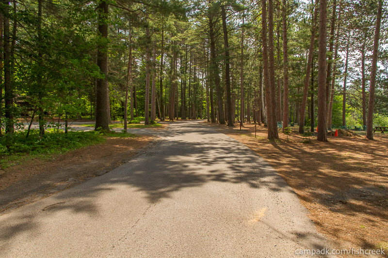 Campsite Photo of Site 16 at Fish Creek Pond Campground, New York - View Down Road from Campsite