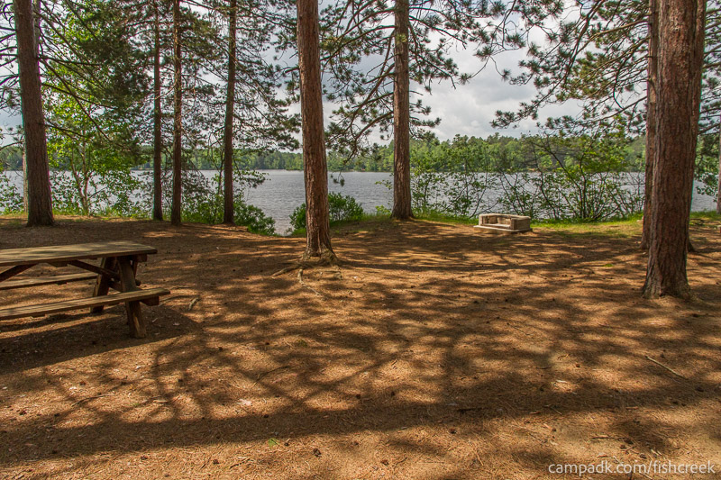 Campsite Photo of Site 15 at Fish Creek Pond Campground, New York - Looking at Site from Part Way In