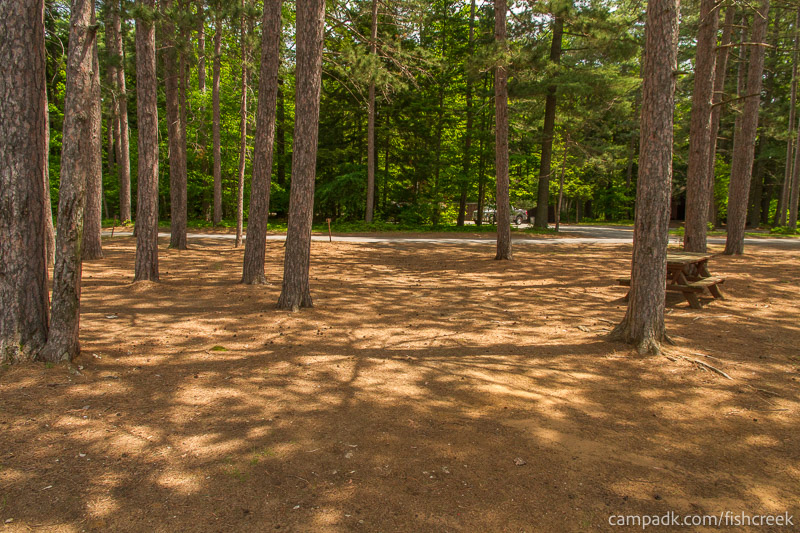 Campsite Photo of Site 15 at Fish Creek Pond Campground, New York - Looking Back Towards Road