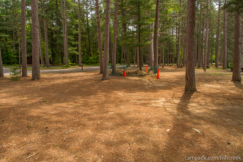 Campsite Photo of Site 14 at Fish Creek Pond Campground, New York - Cross Site View