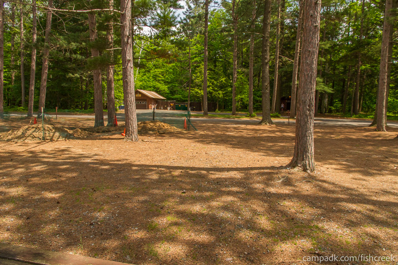 Campsite Photo of Site 13 at Fish Creek Pond Campground, New York - Looking Back Towards Road