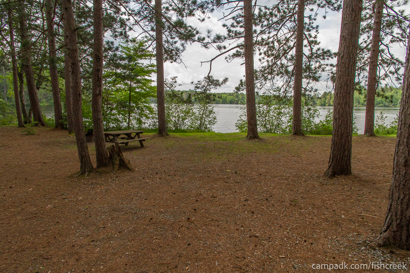 Campsite Photo of Site 12 at Fish Creek Pond Campground, New York - Looking at Site from Part Way In