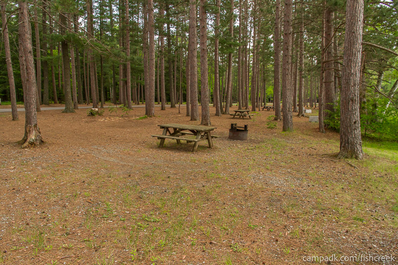 Campsite Photo of Site 12 at Fish Creek Pond Campground, New York - Cross Site View