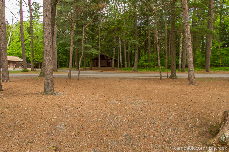 Campsite Photo of Site 12 at Fish Creek Pond Campground, New York - Looking Back Towards Road