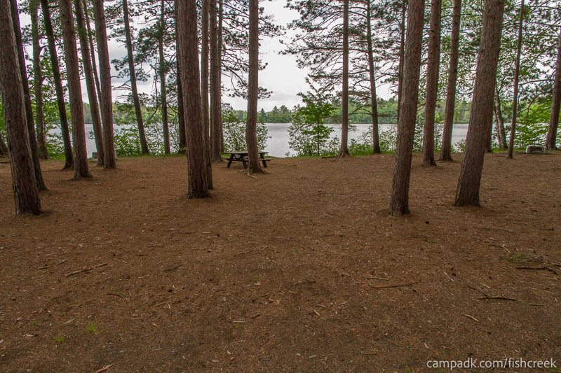 Campsite Photo of Site 10 at Fish Creek Pond Campground, New York - Looking at Site from Road
