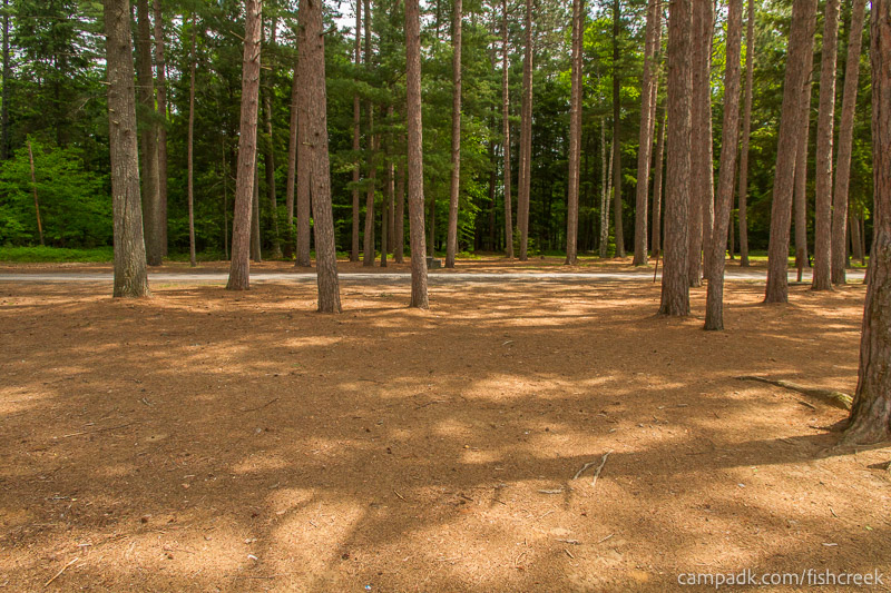 Campsite Photo of Site 10 at Fish Creek Pond Campground, New York - Looking Back Towards Road