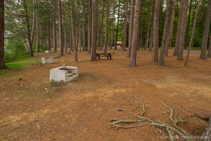 Campsite Photo of Site 9 at Fish Creek Pond Campground, New York - Cross Site View