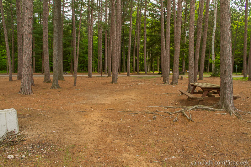 Campsite Photo of Site 9 at Fish Creek Pond Campground, New York - Looking Back Towards Road