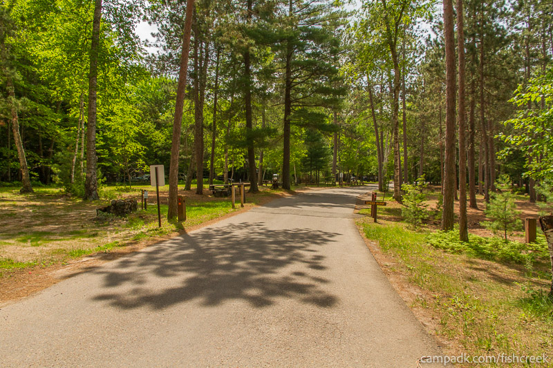 Campsite Photo of Site 9 at Fish Creek Pond Campground, New York - View Down Road from Campsite