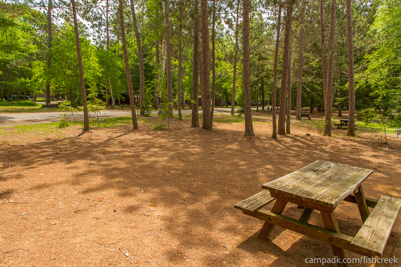 Campsite Photo of Site 8 at Fish Creek Pond Campground, New York - Cross Site View