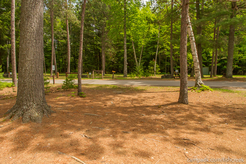 Campsite Photo of Site 8 at Fish Creek Pond Campground, New York - Looking Back Towards Road