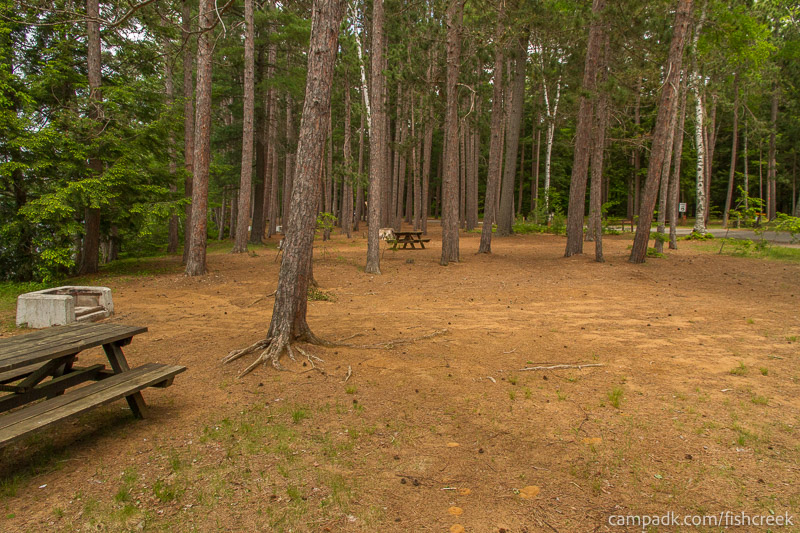 Campsite Photo of Site 7 at Fish Creek Pond Campground, New York - Cross Site View