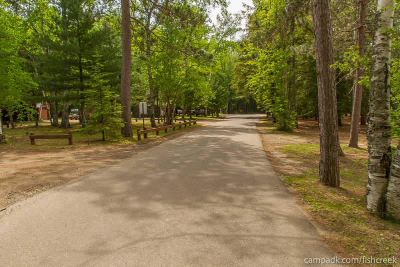 Campsite Photo of Site 7 at Fish Creek Pond Campground, New York - View Down Road from Campsite