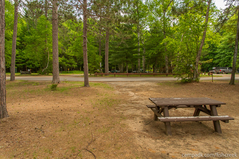 Campsite Photo of Site 6 at Fish Creek Pond Campground, New York - Looking Back Towards Road