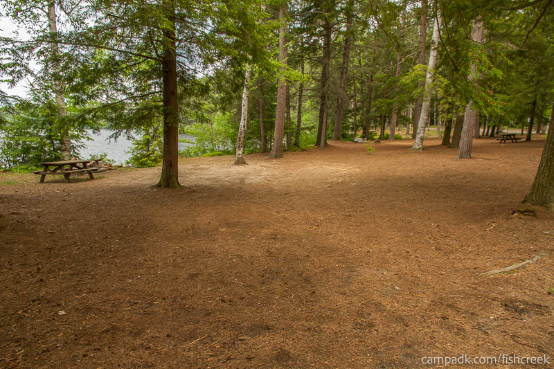 Campsite Photo of Site 4 at Fish Creek Pond Campground, New York - Looking at Site from Road