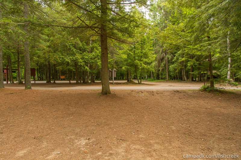 Campsite Photo of Site 4 at Fish Creek Pond Campground, New York - Looking Back Towards Road