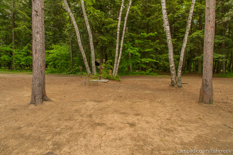 Campsite Photo of Site 1W at Fish Creek Pond Campground, New York - Looking Back Towards Road
