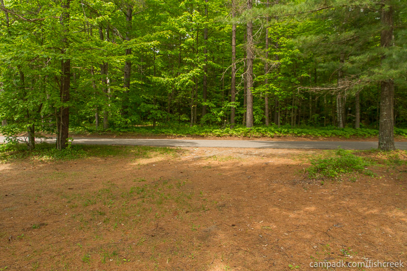 Campsite Photo of Site 105 at Fish Creek Pond Campground, New York - Looking Back Towards Road