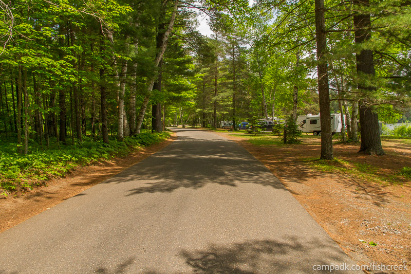 Campsite Photo of Site 105 at Fish Creek Pond Campground, New York - View Down Road from Campsite