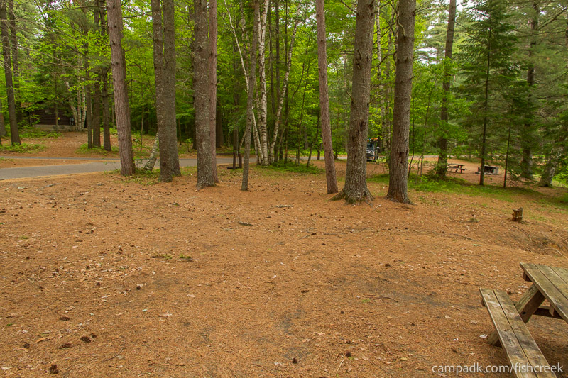 Campsite Photo of Site 126 at Fish Creek Pond Campground, New York - Cross Site View