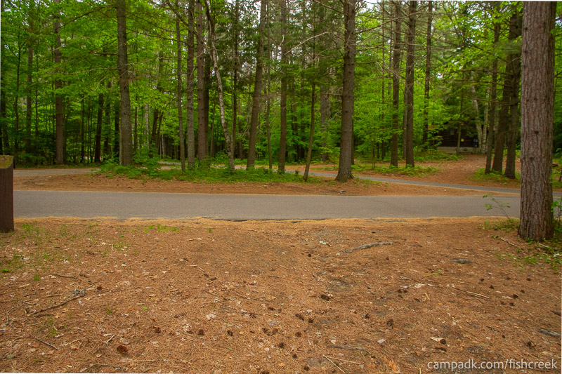 Campsite Photo of Site 126 at Fish Creek Pond Campground, New York - Looking Back Towards Road