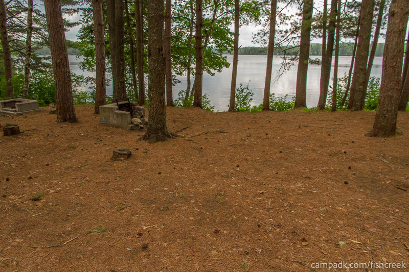 Campsite Photo of Site 127 at Fish Creek Pond Campground, New York - Looking at Site from Part Way In