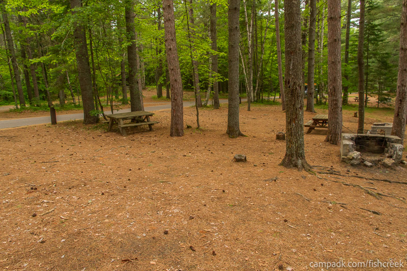 Campsite Photo of Site 127 at Fish Creek Pond Campground, New York - Cross Site View