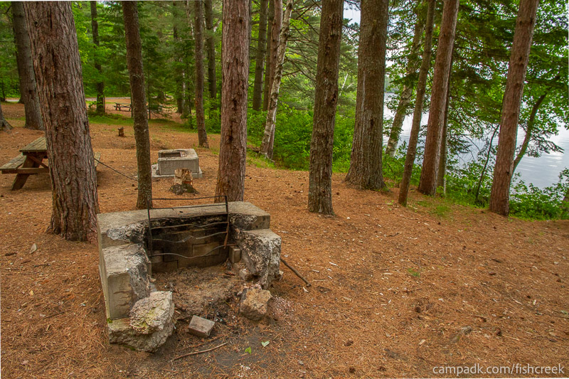 Campsite Photo of Site 127 at Fish Creek Pond Campground, New York - Fireplace View