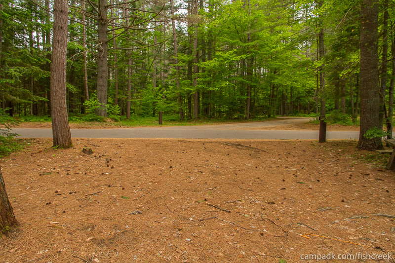 Campsite Photo of Site 127 at Fish Creek Pond Campground, New York - Looking Back Towards Road