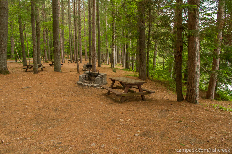 Campsite Photo of Site 131 at Fish Creek Pond Campground, New York - Cross Site View
