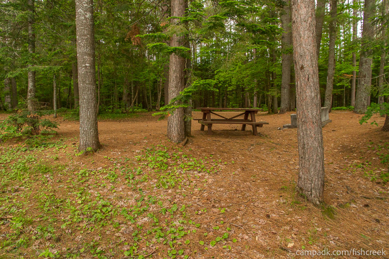 Campsite Photo of Site 131 at Fish Creek Pond Campground, New York - Returning Along Pathway from Water