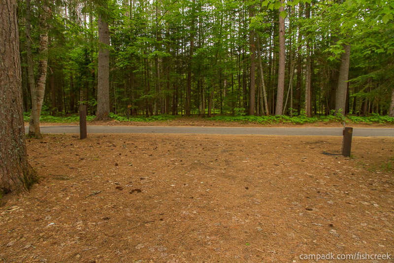 Campsite Photo of Site 131 at Fish Creek Pond Campground, New York - Looking Back Towards Road