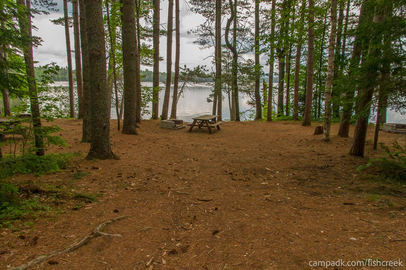 Campsite Photo of Site 133 at Fish Creek Pond Campground, New York - Looking at Site from Part Way In