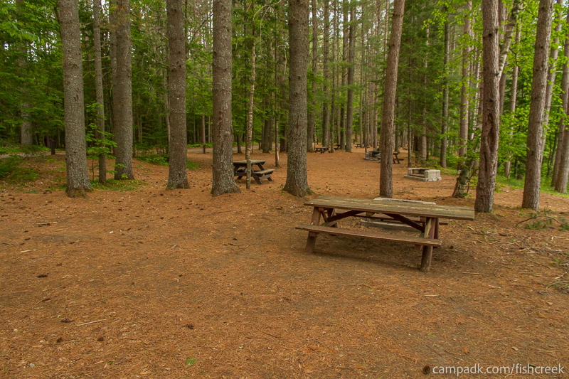 Campsite Photo of Site 133 at Fish Creek Pond Campground, New York - Cross Site View