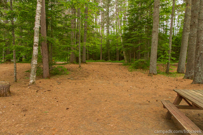 Campsite Photo of Site 133 at Fish Creek Pond Campground, New York - Looking Back Towards Road