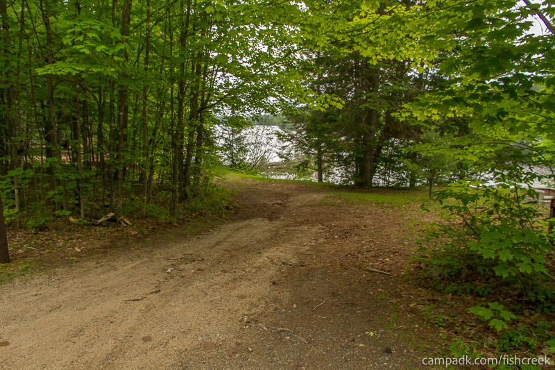 Campsite Photo of Site 161 at Fish Creek Pond Campground, New York - Looking at Site from Road
