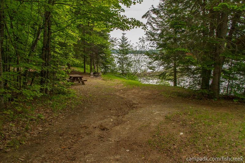 Campsite Photo of Site 161 at Fish Creek Pond Campground, New York - Looking at Site from Part Way In