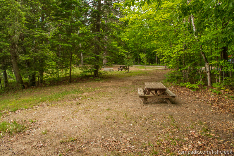 Campsite Photo of Site 161 at Fish Creek Pond Campground, New York - Cross Site View