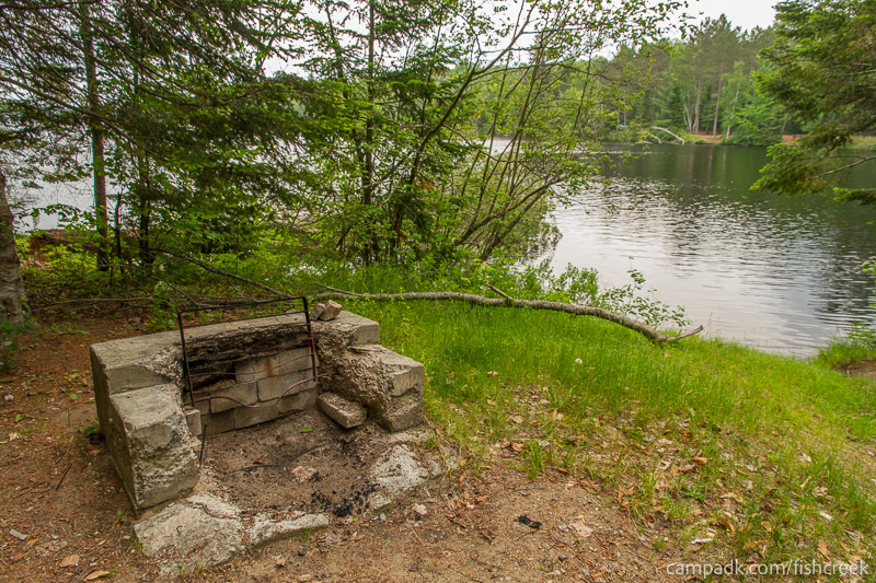Campsite Photo of Site 161 at Fish Creek Pond Campground, New York - Fireplace View