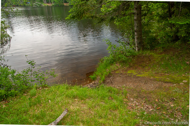 Campsite Photo of Site 161 at Fish Creek Pond Campground, New York - Shoreline
