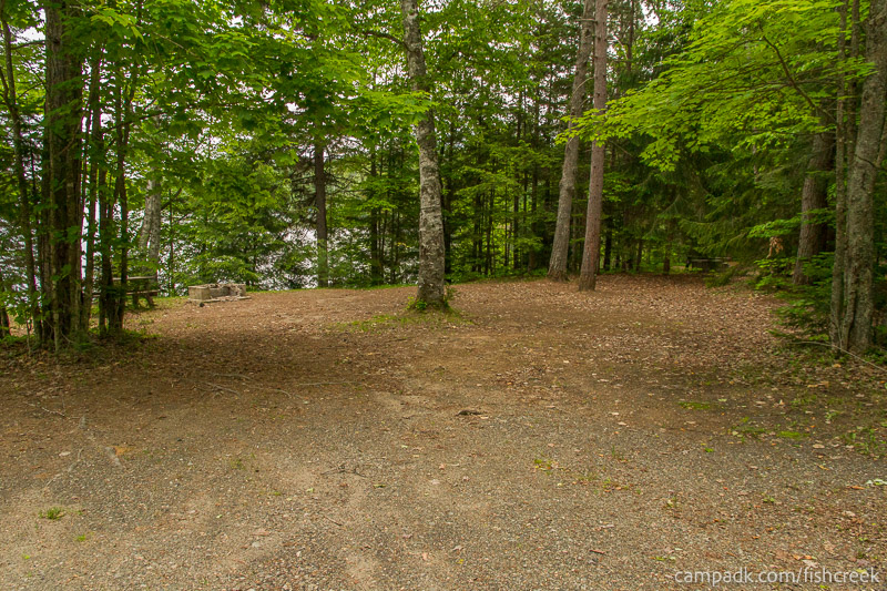 Campsite Photo of Site 163 at Fish Creek Pond Campground, New York - Looking at Site from Road