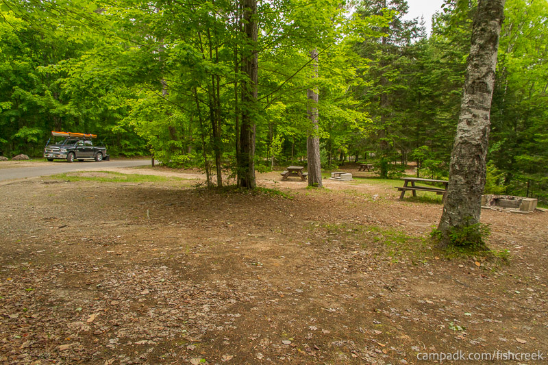 Campsite Photo of Site 163 at Fish Creek Pond Campground, New York - Cross Site View