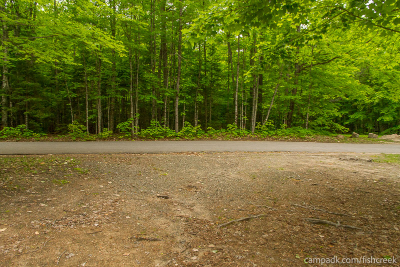 Campsite Photo of Site 163 at Fish Creek Pond Campground, New York - Looking Back Towards Road