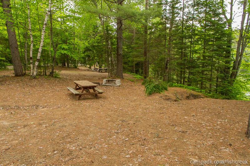 Campsite Photo of Site 165 at Fish Creek Pond Campground, New York - Cross Site View