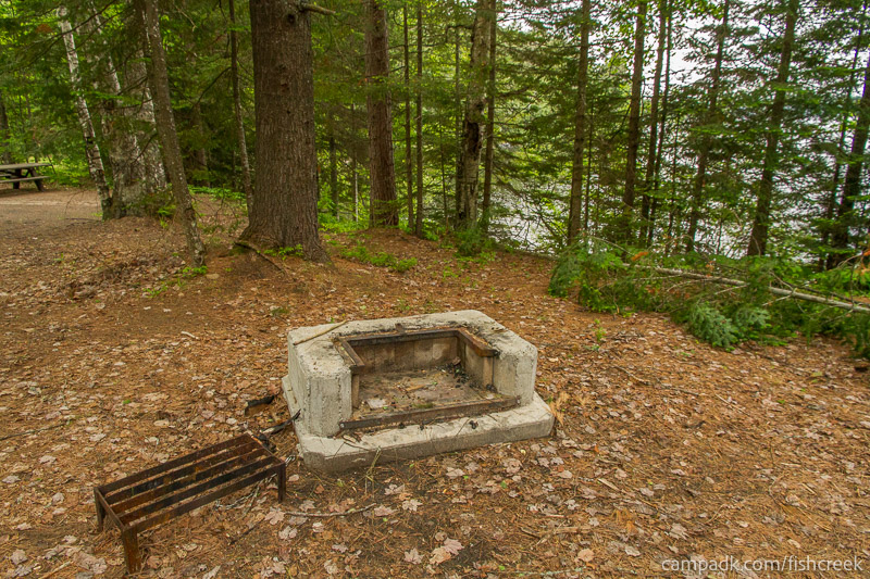 Campsite Photo of Site 165 at Fish Creek Pond Campground, New York - Fireplace View