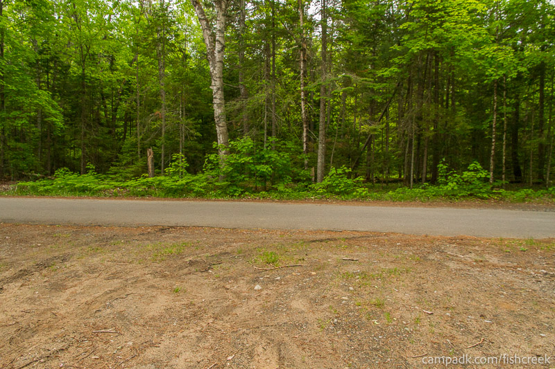 Campsite Photo of Site 165 at Fish Creek Pond Campground, New York - Looking Back Towards Road